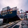 一次性塑料盒海运到澳洲价格 澳洲门到门海运价格